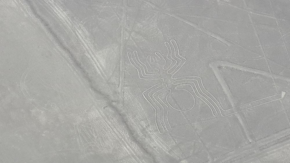 Peru'daki Nazca Çizgileri